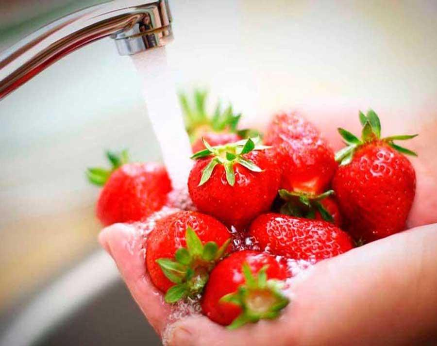 Rinsing strawberries in a sink